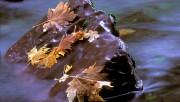 Beautiful Nature Wallpapers - Part 2 2da02c108362781