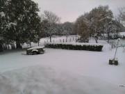 The Snow 2010 4b09a1110168268